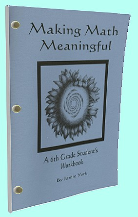 The Making Math Meaninful Math Curriculum Series - 6th grade students's workbook by Jamie York