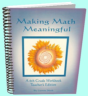 The Making Math Meaninful Math Curriculum Series - 6th grade teachers guide - by Jamie York