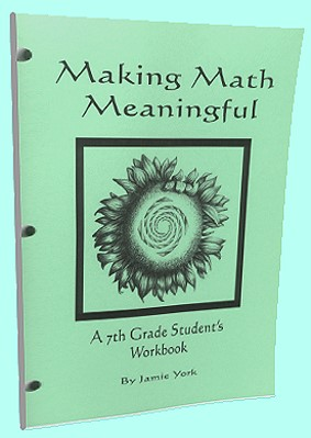 The Making Math Meaninful Math Curriculum Series - 7th grade students's workbook by Jamie York