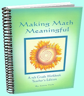 The Making Math Meaninful Math Curriculum Series - 7th grade teacher's workbook by Jamie York