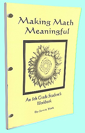 The Making Math Meaninful Math Curriculum Series - 8th grade student's workbook by Jamie York