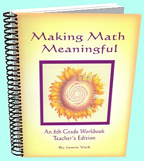 The Making Math Meaninful Math Curriculum Series - 8th grade teacher's workbook by Jamie York